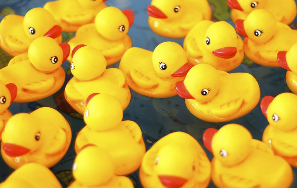 lucky duck game iStock_000007192480_Medium