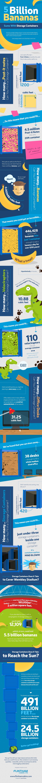 Flintham Cabins Infographic---resized (2)
